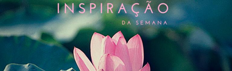 Inspiração da Semana – Ocupação do Pinheirinho por Daniel Ávila