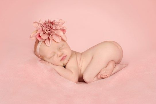 Terceira edição do Newborn Photo Conference