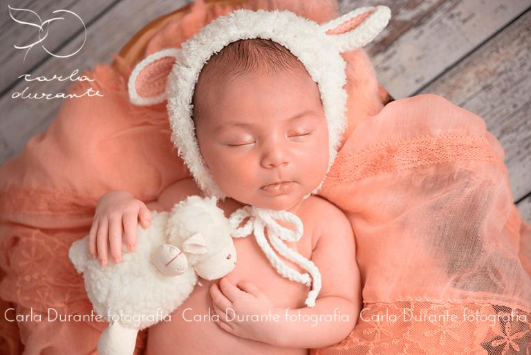 Transmissão Gratuita do Curso de Fotografia Newborn com a fotógrafa Carla Durante