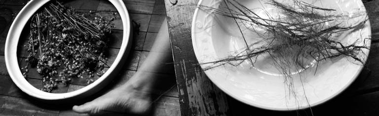 Autorretratos com Jacqueline Hoofendy